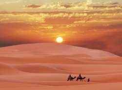 Узбекистан - жемчужина песков!